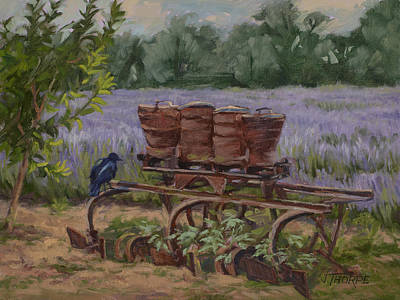 Painting - Where's The Seed? by Jane Thorpe