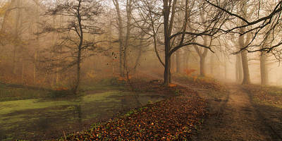 Mist Wall Art - Photograph - Which Path II by Leif L?ndal