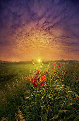 Photograph - While A Thousand Other Worries Are Floating In The Wind by Phil Koch