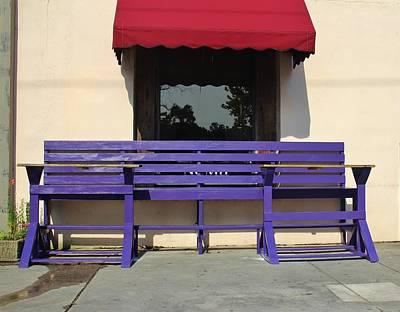 Photograph - Whimsical Purple Bench  by Cynthia Guinn