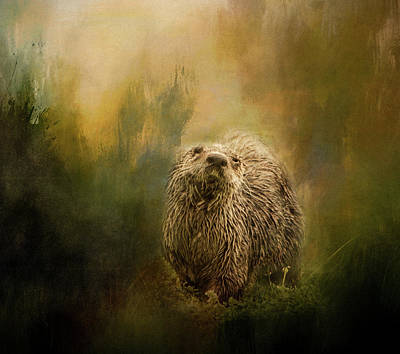 Photograph - Whimsical Sea Otter by Marilyn Wilson