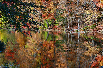 Photograph - Whippany River Reflection 3 by Allen Beatty