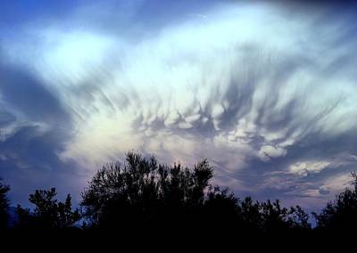 Photograph - Whipped Cream Sky by Marlene Burns