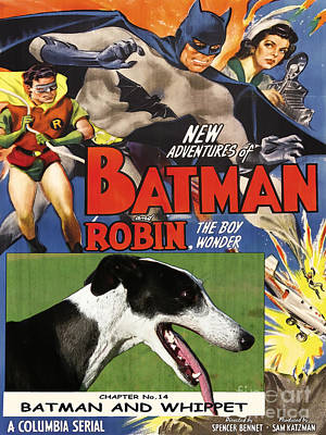 Painting - Whippet Art - Batman Movie Poster by Sandra Sij
