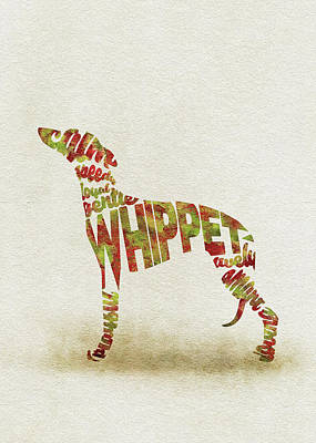 Art Print featuring the painting Whippet Watercolor Painting / Typographic Art by Inspirowl Design