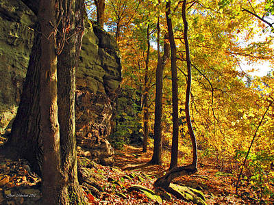 Akron Falls Photograph - Whipp's Ledges In Autumn by Joan  Minchak