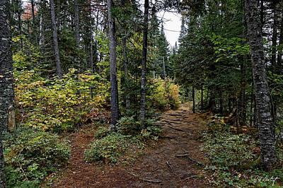 Whiskey Rapids Trail Original