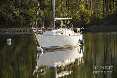 Photograph - Whiskeytown Reflections by Randy Wood