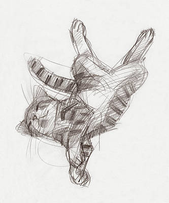 Drawing - Yoga Cat by Judith Kunzle