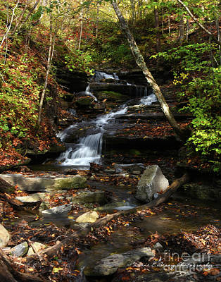 Photograph - Whisper Falls by Diane E Berry