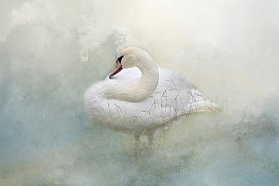 Photograph - Whisper In The Mist by Lynn Bauer