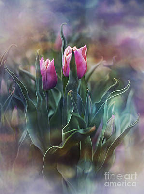 Photograph - Whisper Of Spring by Agnieszka Mlicka
