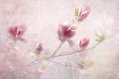 Whisper Of Spring Art Print