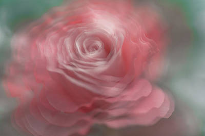 Photograph - Whispering Beauty by Jenny Rainbow