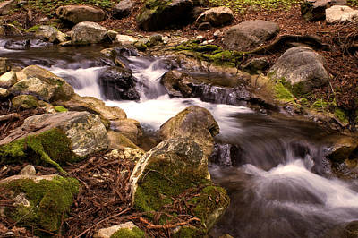 Photograph - Whispering Creek by Gary Brandes