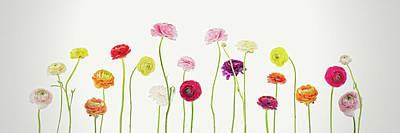 Whispering Spring Art Print