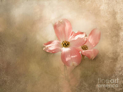 Whispers From Heaven Art Print by Brenda Bostic