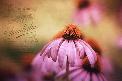 Purple Flowers Digital Art - Whispers  by Maria Angelica Maira