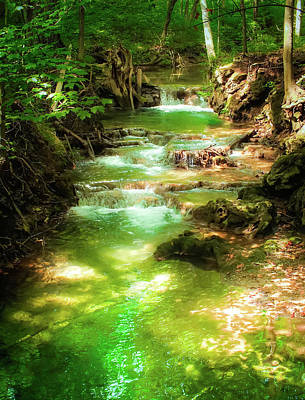 Creekbed Photograph - Whispers Of Evergreen by Karen Wiles