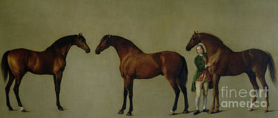 Painting - Whistlejacket And Two Other Stallions With Simon Cobb, The Groom by George Stubbs