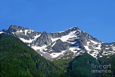 Photograph - Whistler Mountain by Karen Adams