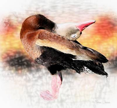 Yoga Pose Painting - Whistling Duck Yoga Pose by Barbara Chichester