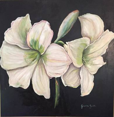 Painting - White Amaryllis  by Gloria Smith