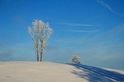 Photograph - White And Blue Simplicity by Randi Grace Nilsberg