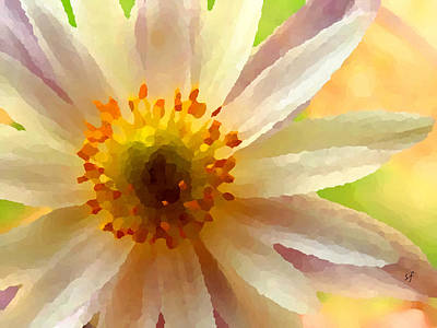 Digital Art - White Anemone Flower by Shelli Fitzpatrick