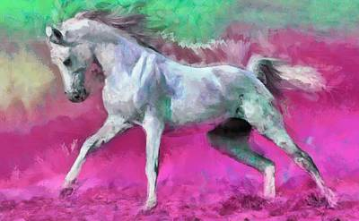 Digital Art - White Arabian Horse Art by Caito Junqueira