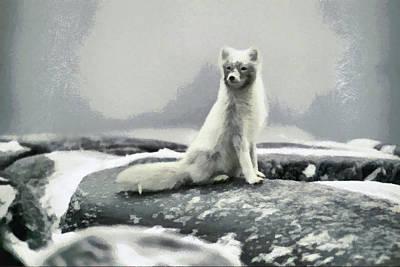 Open Impressionism California Desert - White Arctic Wolf by Mario Carini