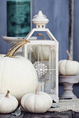 Photograph - White Autumn Decorations by Stephanie Frey