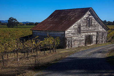 Wine Vineyard Photograph - White Barn by Garry Gay