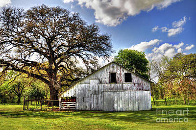 Photograph - White Barn by Savannah Gibbs