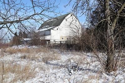 Photograph - White Barn Through The Trees by Scott Kingery