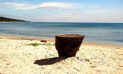 Photograph - White Beach With A Tree Stump by Christopher Shellhammer