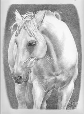 Drawing - White Beauty by Karen Townsend