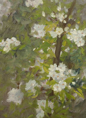 White Blossom Print by Henry Scott Tuke