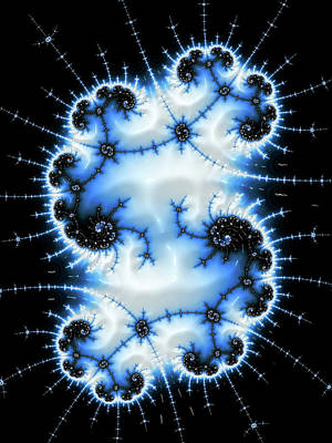 Digital Art - White Blue And Black Winter Fractal by Matthias Hauser
