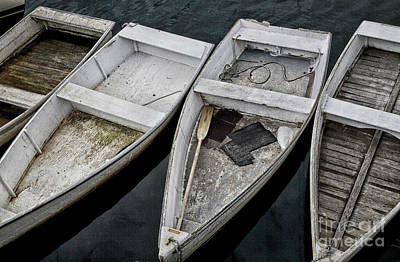 Photograph - White Boats by Timothy Johnson