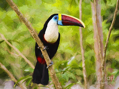 Toucan Mixed Media - White Breasted Toucan Impasto Style by Garland Johnson