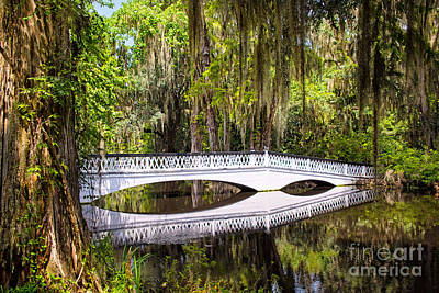 Mirror Imaging Photograph - White Bridge Of Magnolia Plantation by Sharon McConnell