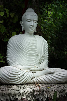 Photograph - White Buddha by Honey Bee
