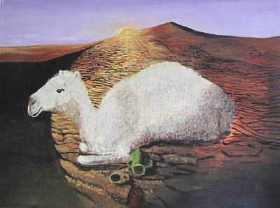 Painting - White Camel  by Aleta Parks