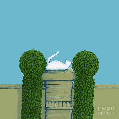 Drawing - White Cat Blue Sky by Donna Huntriss