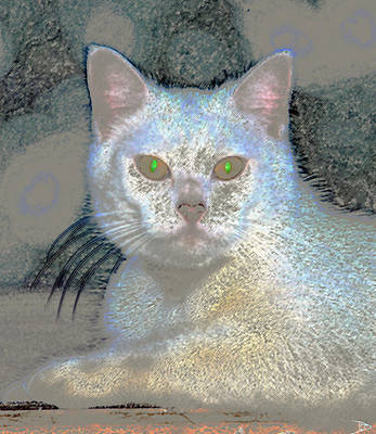 House Pet Painting - White Cat Green Eyes by David Lee Thompson