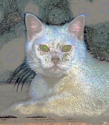 White Cat Green Eyes Art Print by David Lee Thompson