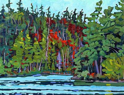 Paint Painting - White Cedar Shore by Phil Chadwick