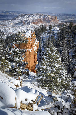 Photograph - White Christmas In Bryce by Joe Doherty