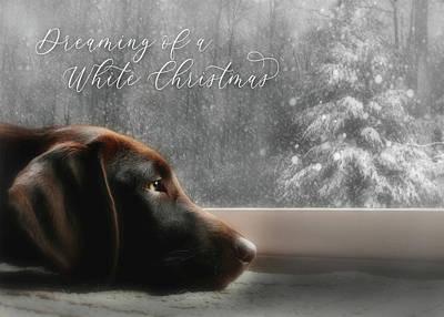 Retriever Wall Art - Photograph - White Christmas by Lori Deiter